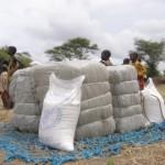Cargo flights deliver food